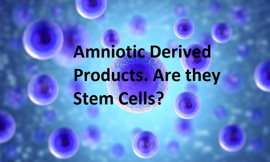 Adult Stem Cell Embryonic Stem Cell 30